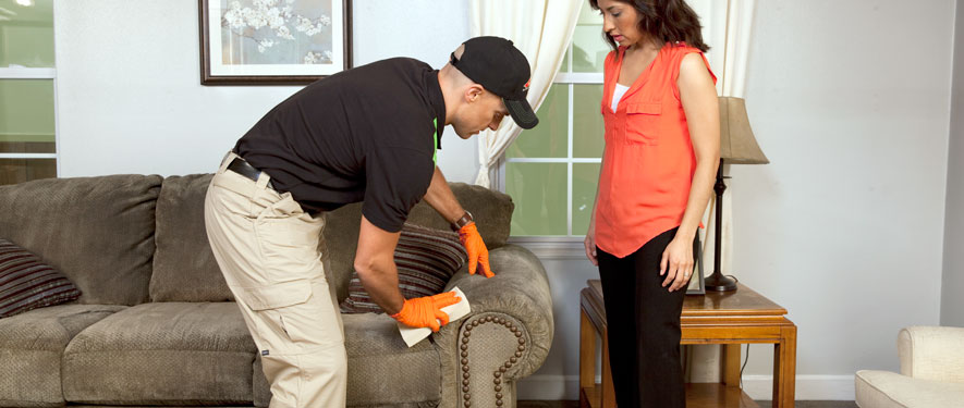 Hannibal, MO carpet upholstery cleaning